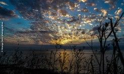 Presqu'île de Quiberon pointe du Conguel