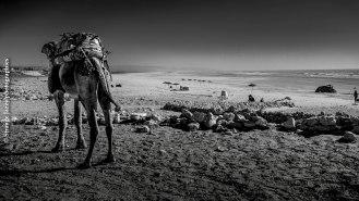 On the beach, Marocco