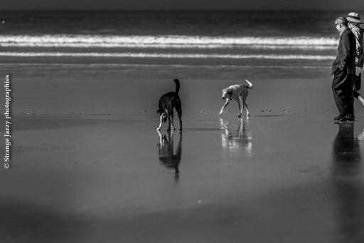 On the beach, Essaouira
