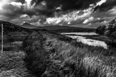 Skye, Scotland