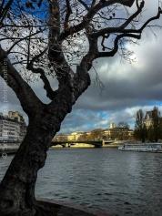 Côté île de la Cité, Paris