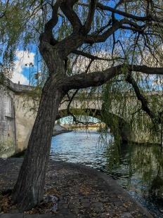 Sur le bord de la Seine