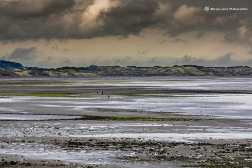 Newcastel's bay