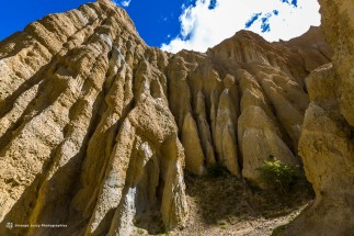 Clay Cliffs 9